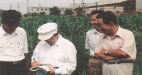 checking-us-corn-performance-at-naari-1998